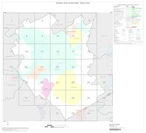 Primary view of object titled '2000 Census County Subdivison Block Map: Waco CCD, Texas, Index'.