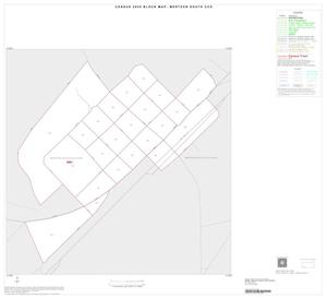 Primary view of object titled '2000 Census County Subdivison Block Map: Mertzon South CCD, Texas, Inset B01'.