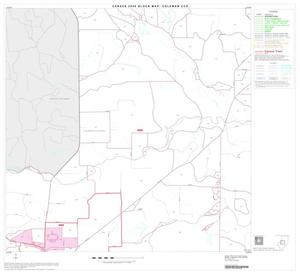 Primary view of object titled '2000 Census County Subdivison Block Map: Coleman CCD, Texas, Block 4'.