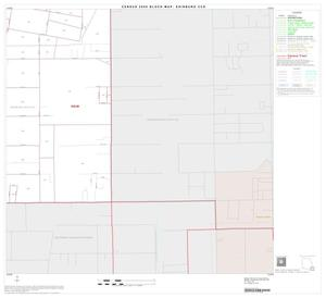 Primary view of object titled '2000 Census County Subdivison Block Map: Edinburg CCD, Texas, Block 16'.