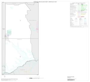 Primary view of object titled '2000 Census County Subdivison Block Map: Winfield CCD, Texas, Index'.