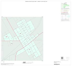 Primary view of object titled '2000 Census County Subdivison Block Map: Liberty-Dayton CCD, Texas, Inset C01'.