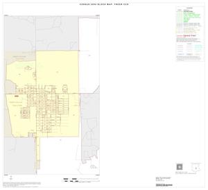 Primary view of object titled '2000 Census County Subdivison Block Map: Freer CCD, Texas, Inset A01'.