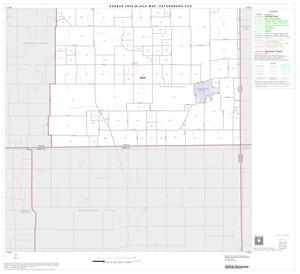 Primary view of object titled '2000 Census County Subdivison Block Map: Petersburg CCD, Texas, Block 2'.