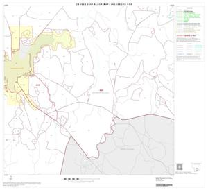 Primary view of object titled '2000 Census County Subdivison Block Map: Jacksboro CCD, Texas, Block 10'.
