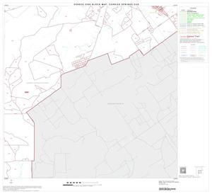 Primary view of object titled '2000 Census County Subdivison Block Map: Carrizo Springs CCD, Texas, Block 5'.