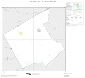 Primary view of object titled '2000 Census County Subdivison Block Map: Blooming Grove CCD, Texas, Index'.