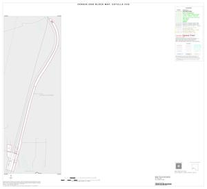 Primary view of object titled '2000 Census County Subdivison Block Map: Cotulla CCD, Texas, Inset D01'.
