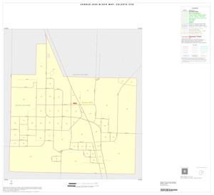 Primary view of object titled '2000 Census County Subdivison Block Map: Celeste CCD, Texas, Inset A01'.