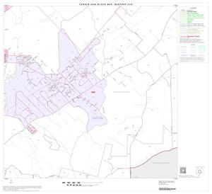 Primary view of object titled '2000 Census County Subdivison Block Map: Bastrop CCD, Texas, Block 5'.