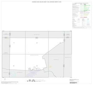 Primary view of object titled '2000 Census County Subdivison Block Map: Big Spring North CCD, Texas, Index'.