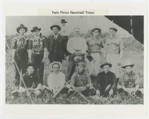 Primary view of object titled 'Palo Pinto Baseball Team'.