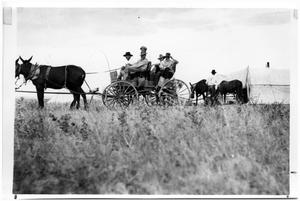 Primary view of object titled 'Mules Pulling a Wagon'.