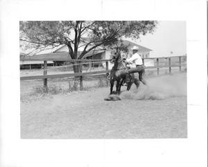 "Primary view of object titled 'Cowboy Dismounting ""Pretty Buck"" at the Waggoner Ranch'."