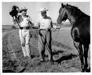 Primary view of object titled 'E. Paul Waggoner with a Quarter Horses at Waggoner Ranch'.