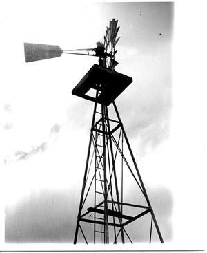 Primary view of object titled 'Looking Up at an Aermotor Windmill'.