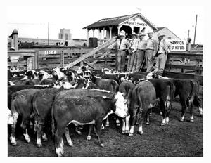 Primary view of object titled 'Five Men Viewing Cattle at a Stock Show'.