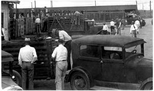 Primary view of object titled 'Men, Trucks and Cars at the Stockyards'.