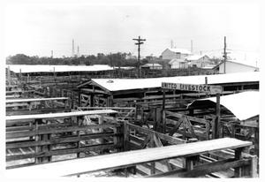 Primary view of object titled 'Houston Stockyards in 1968'.