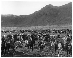 Primary view of object titled 'Cowboys Driving Cattle across West Texas'.