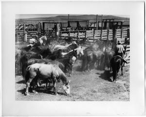 Primary view of object titled 'Wild Horses'.