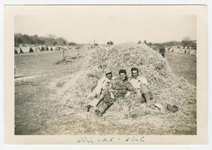 Primary view of object titled '[Three Soldiers Reclining in Hay]'.