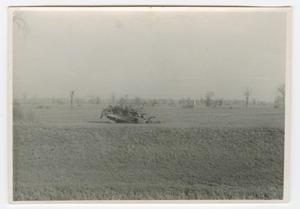 Primary view of object titled '[Destroyed Sherman Tank in a Field]'.