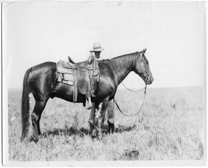 Primary view of object titled 'Cowboy with Saddled Horse'.