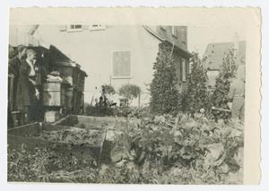 Primary view of object titled '[Working in Garden]'.