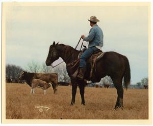 Primary view of object titled 'Cowboy and Cattle'.