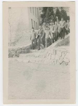 Primary view of object titled '[Young Men Walking Down Stone Steps]'.
