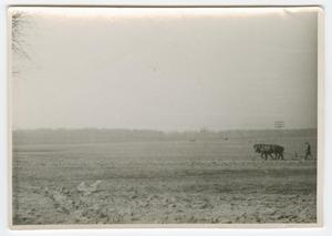 Primary view of object titled '[Man with a Horse-Drawn Plough]'.