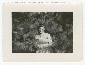 Primary view of object titled '[William Giannopoulos Standing Against an Evergreen Tree]'.