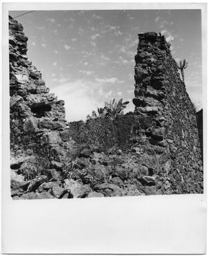 Primary view of object titled 'Rocks and Cacti'.