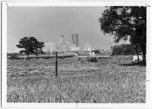 Primary view of object titled 'Fort Worth Skyline'.