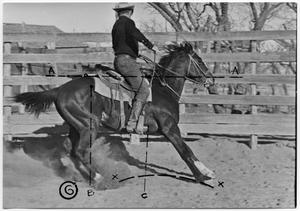 Primary view of object titled 'Monte Foreman on Horseback'.