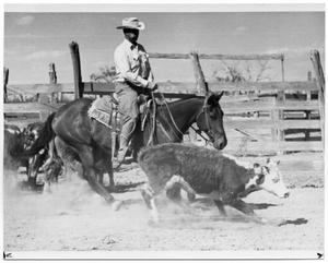 Primary view of object titled 'Monte Foreman Herding Cattle'.