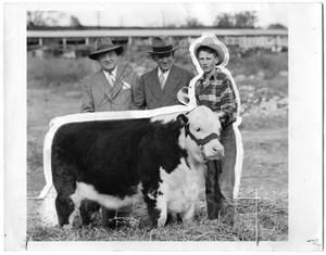 Primary view of object titled 'Grand Champion Steer'.