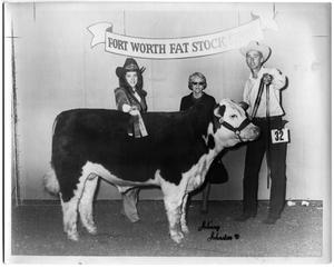 Primary view of object titled 'Champion Hereford Steer, Open Show'.