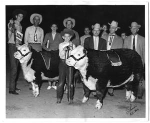Primary view of object titled 'Champion and Reserve Champion Herefords at the 1955 HFSS'.