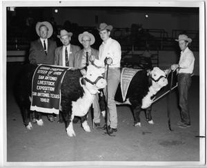 Primary view of object titled 'Grand Champion Steer at San Antonio Livestock Expo, 1962'.