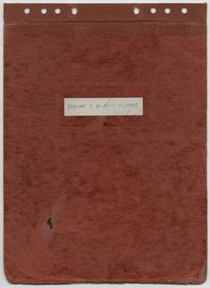 Primary view of object titled '[News Story Log: January 1 to June 30, 1993]'.