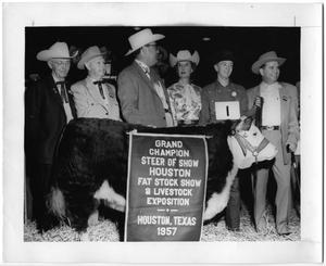 Primary view of object titled 'Grand Champion Steer of Show, Houston, Texas, 1957'.