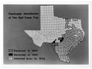 Primary view of object titled 'A Map of Gulf Coast Tick Distribution'.