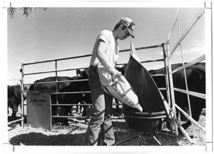 Primary view of object titled 'Farmer with Feedbag'.