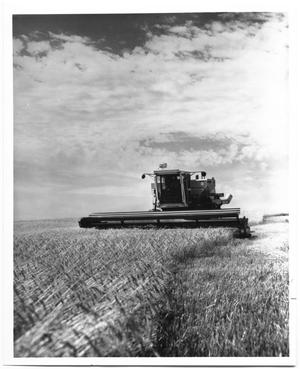 Primary view of object titled 'Large Tractor Cutting Wheat'.