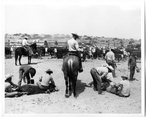 Primary view of object titled 'Cowboys Branding Cattle'.