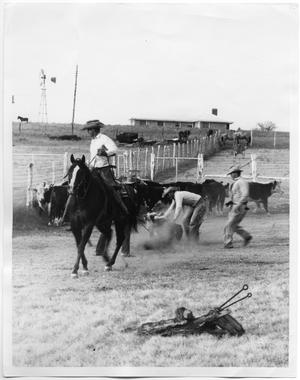 Primary view of object titled 'Roping Cattle for Branding'.