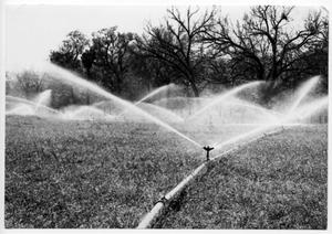 Primary view of object titled '[Flat Top Ranch Irrigation]'.