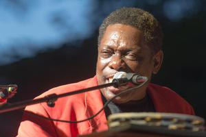 Primary view of object titled '[Lucky Peterson performs at Denton Blues Festival]'.